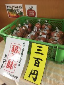 トマト発売開始